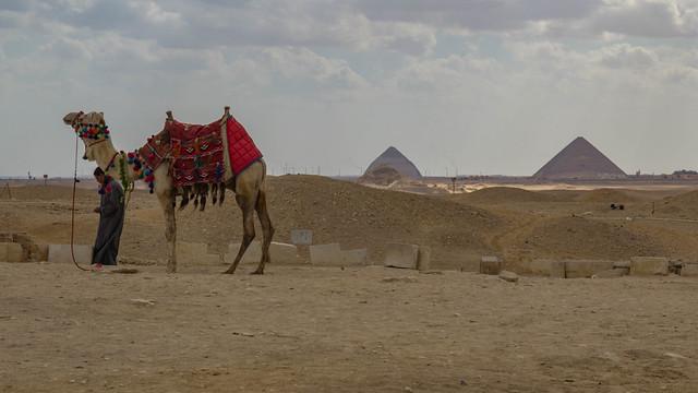 Necropoli di Saqqara 25