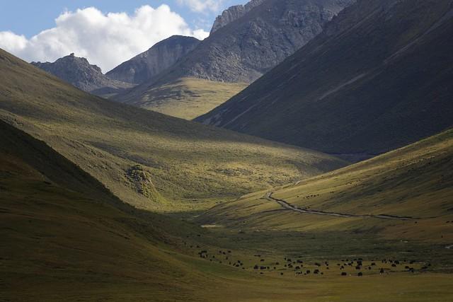 Trindu county landscape, Tibet 2018