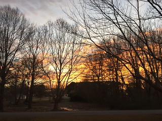 Sunrise from my front porch | by colorpoetry