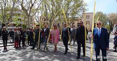 procesion-domingo-de-ramos-tomelloso-la-borriquilla-11