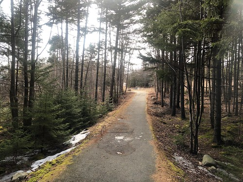 Forest Hills Trail, Cole Harbour