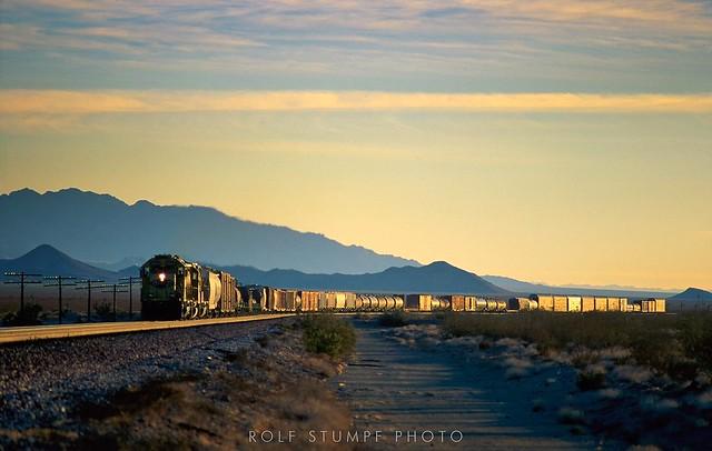 Mojave desert splendor