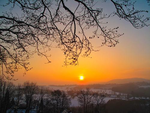 landscape outdoor winter snow evening sunset dusk sun branch twig wood tree forest field view january freinberg linz upperaustria oberösterreich austria österreich sky hill