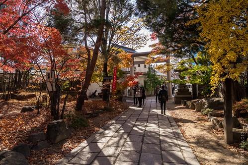 Gardens near Yohashira Shrine   by FlickrDelusions