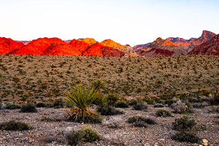 Sonnenaufgang Red Rock Canyon | by Margo BonBon