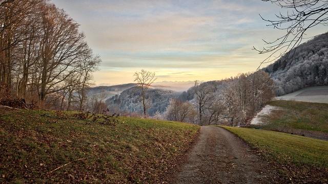 Winter Landscape with Alps (Switzerland)