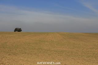 Ruta: Pilar de Almenara (459 m) (Els 100 Cims)   by Las Fotos de Rafa Yanes