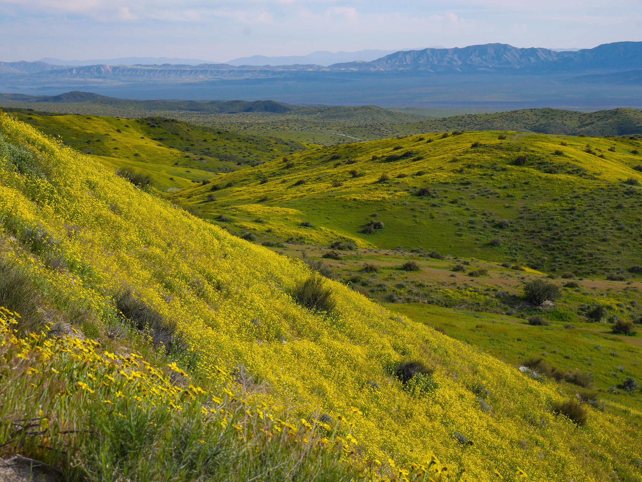 Carrizo Plain from the Temblor Range