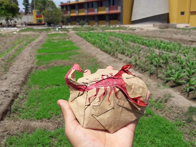 Origami Flat Scorpion by Li Lianhua / Task 3 - IOIO 2018