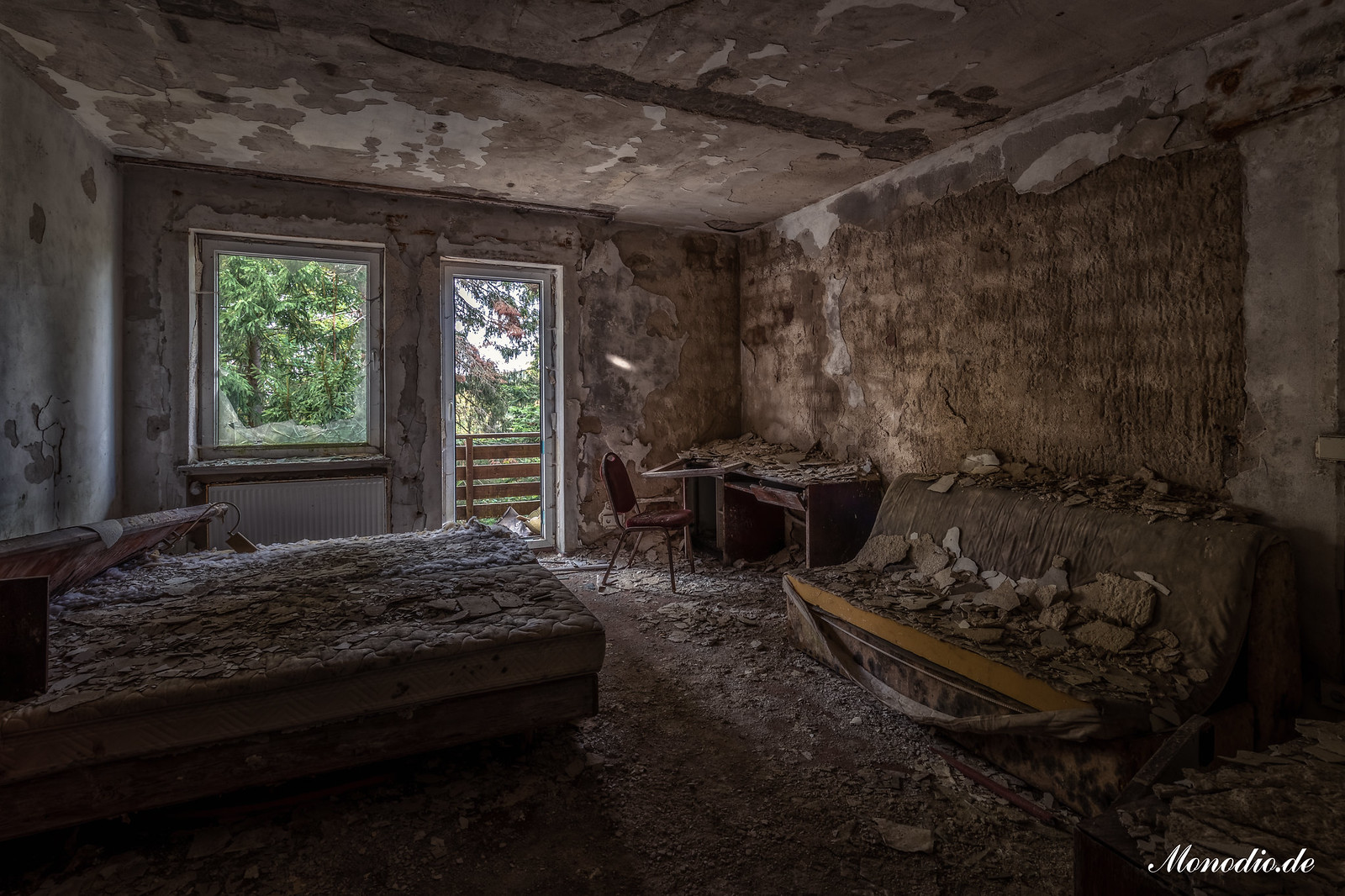 Das Schimmelhotel