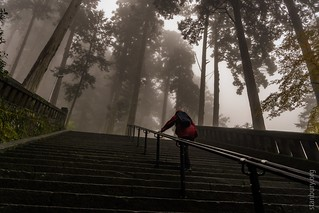Climbing to the Iemitsu Mausoleum | by FlickrDelusions