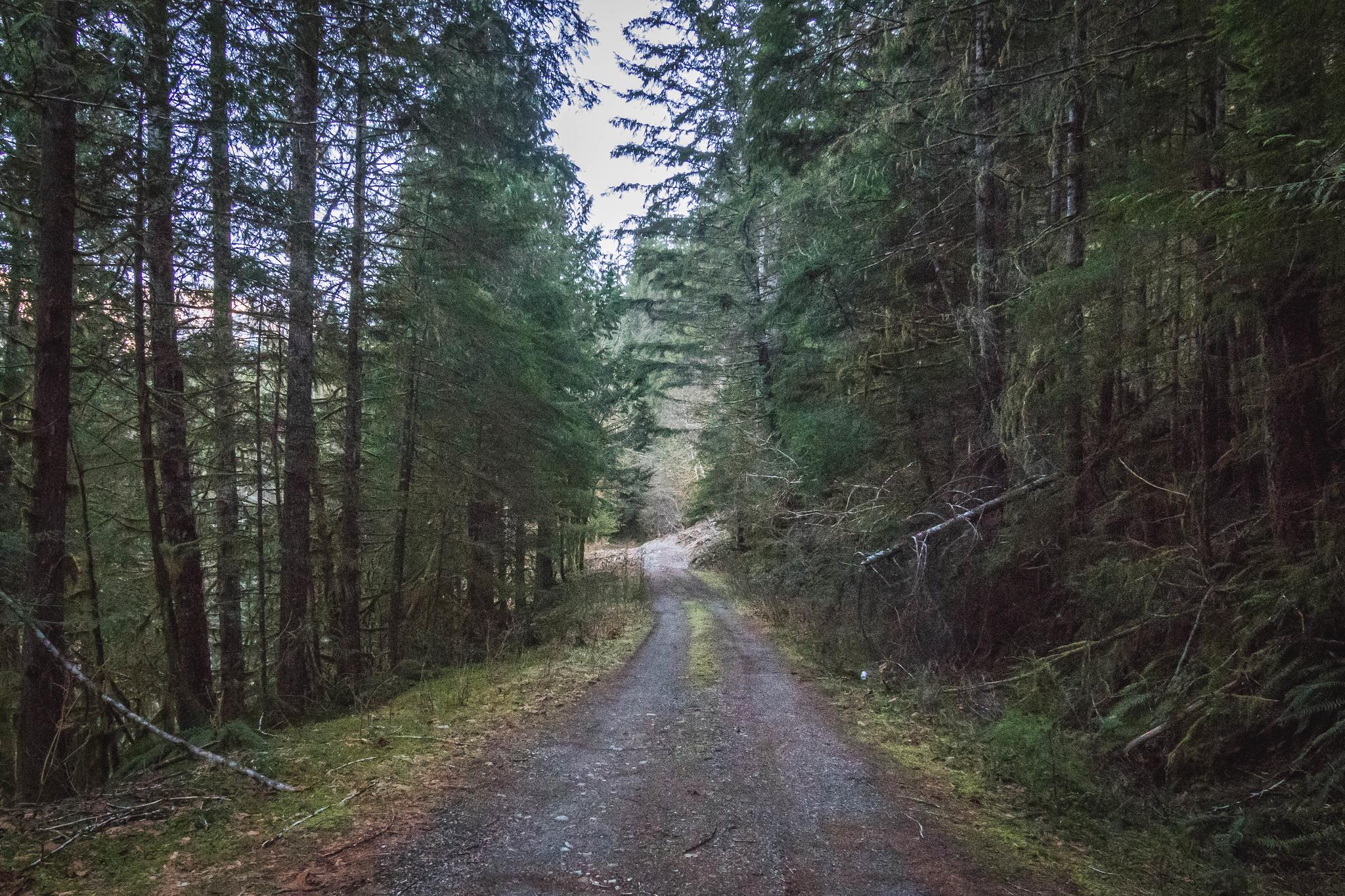 Bacon Creek Road