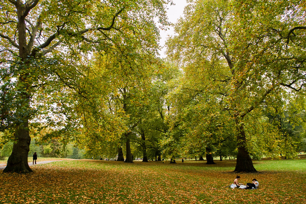 Relaxing under the trees in Green Park