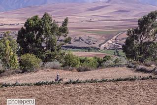 maras15.11 (38) | by Photo Peru Stock