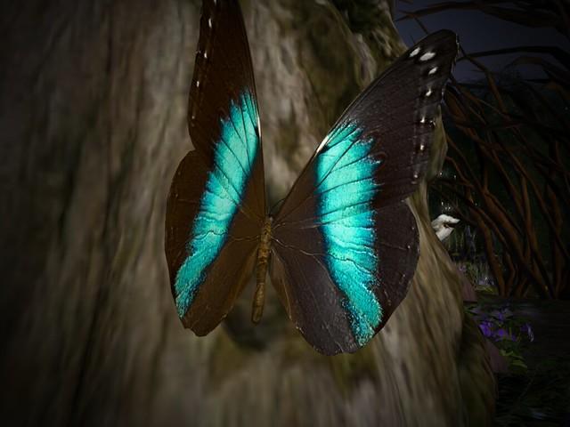 LEA7:  Magic-n- Mischief - Swallowtail Spotlight