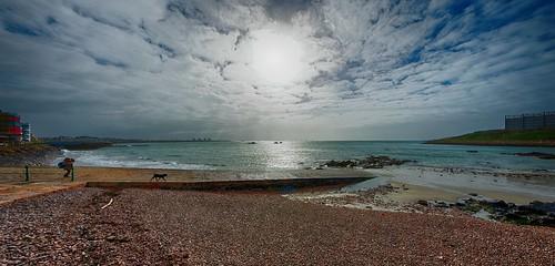 Beach. Dog. Sky. | by Bendigoish