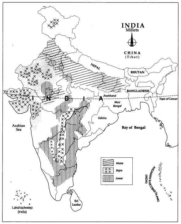 Class 10 Geography Map Work Chapter 4 Agriculture 7