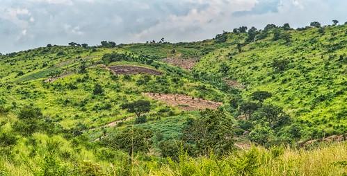 mosinditotwigalodge places scenes uganda