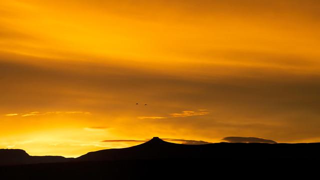 Sunrise - 3-23-19-850_1280_13087