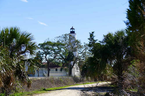 usa florida stmarks nationalwildliferefuge palme palmtree baum tree leuchtturm lighthouse landschaft landscape natur nature ivlys