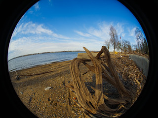 2019-02-15 Fisheye Walk-11.jpg | by wezlo