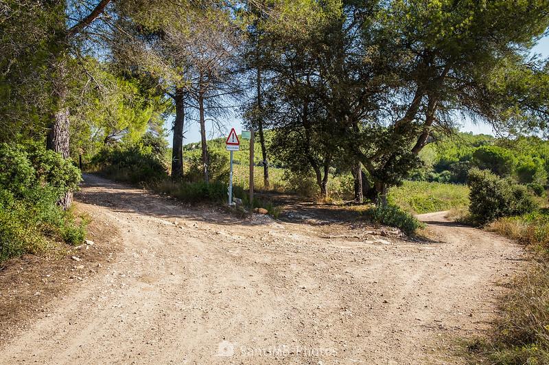 Cruce de caminos cerca de la Caseta de Viladellops
