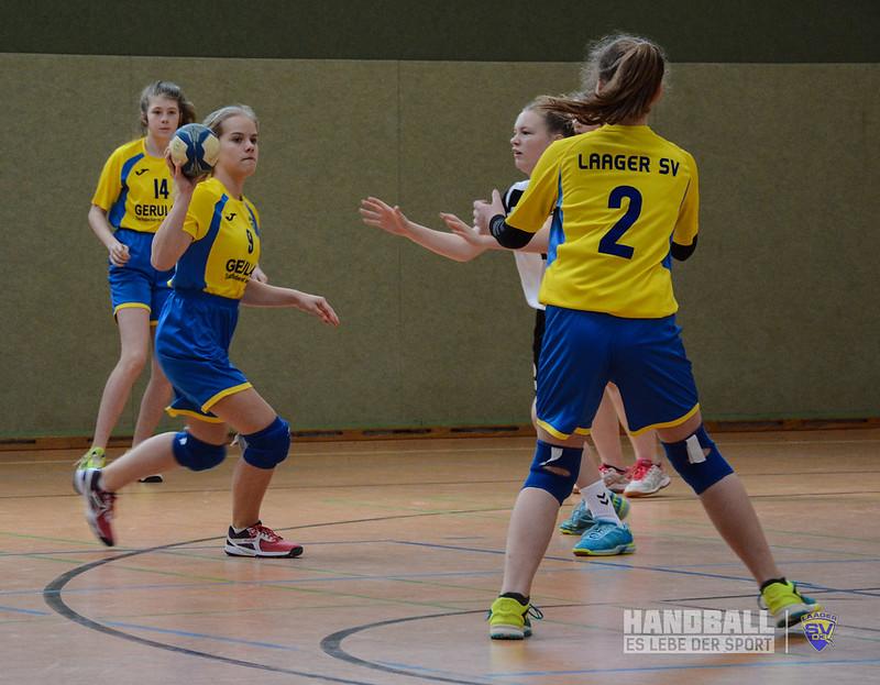 20190406 Laager SV 03 Handball wJD - SV Eintracht Rostock (6).jpg