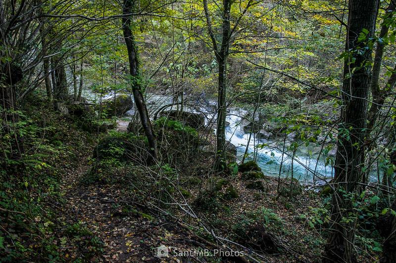 Camino que baja al río Gurn