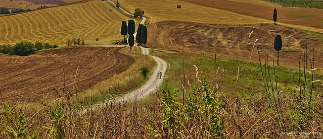Gladiator road