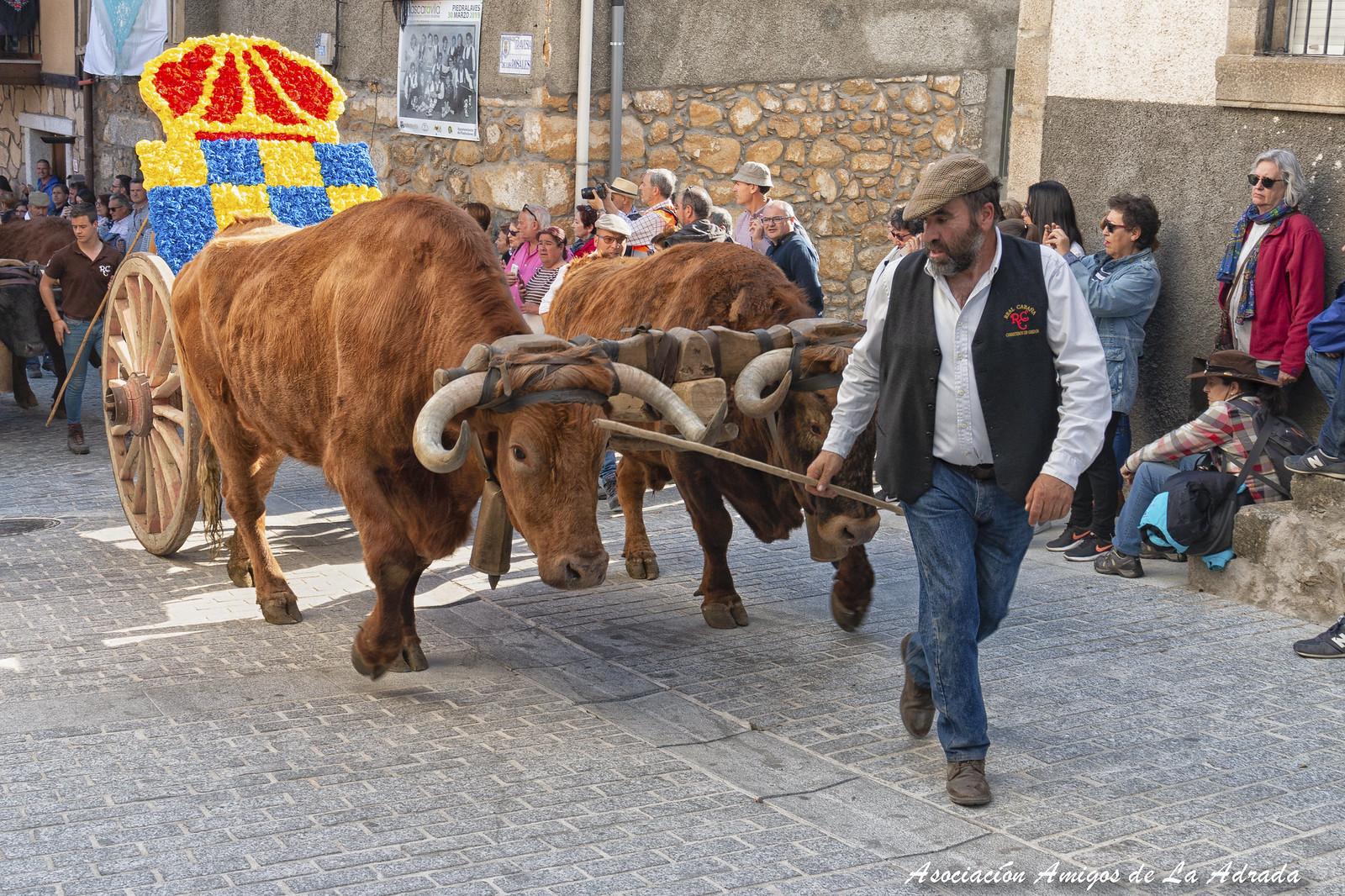 Mascarávila 2019