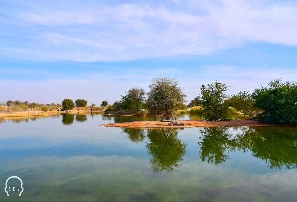 Love lake - Al Qudra