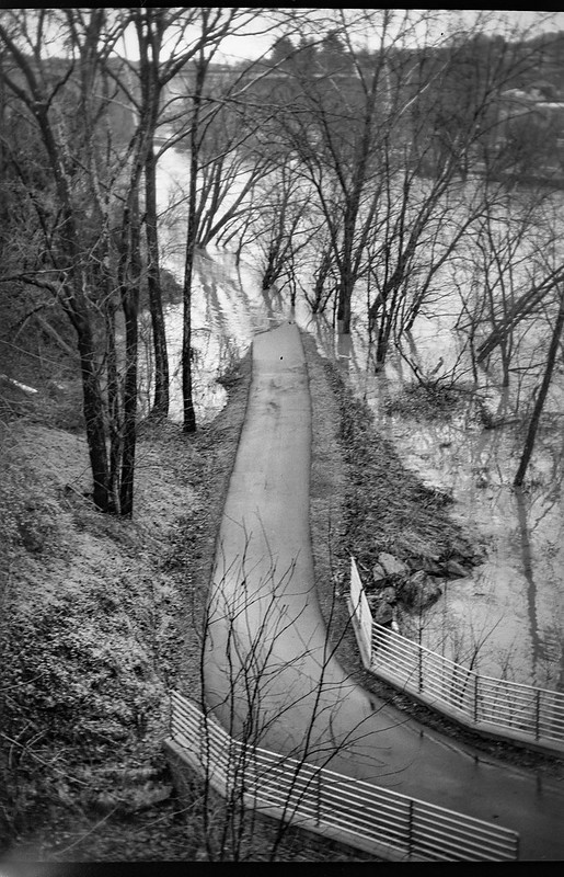 looking down, urban park, flooded, French Broad River, Ashevile, North Carolina, Goerz Box Tengor, Kodak TriX 400, 12.28.18