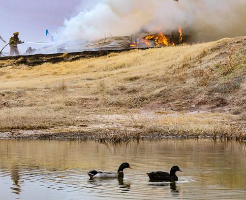 garret creek fire_jduty063_1 | by joeduty