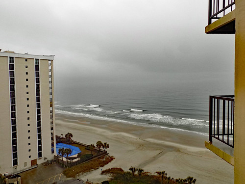 myrtlebeach sc southcarolina horrycounty hilton hotel lodging motel resort hiltonresort outdoor outdoors outside february monday mondayafternoon goodafternoon afternoon travel workingvacation water waves ocean atlantic atlanticocean beach shore tree trees palm palmtrees city building architecture resorts hotels tallbuildings skyscraper grass lawn greenery sand bodyofwater nikon coolpix l340 bridgecamera