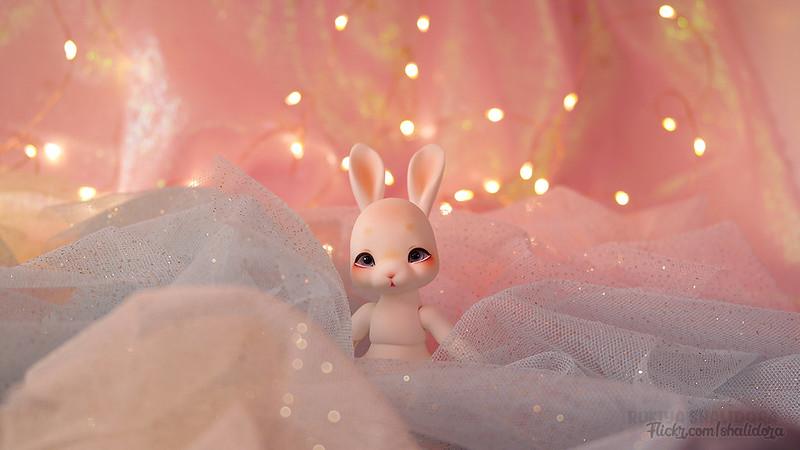 Rukiya's Dolls MAJ 25/07 ~Arrivée Cocoriang Poi Limited~ p33 - Page 33 32276485427_2f3b8da8c1_c