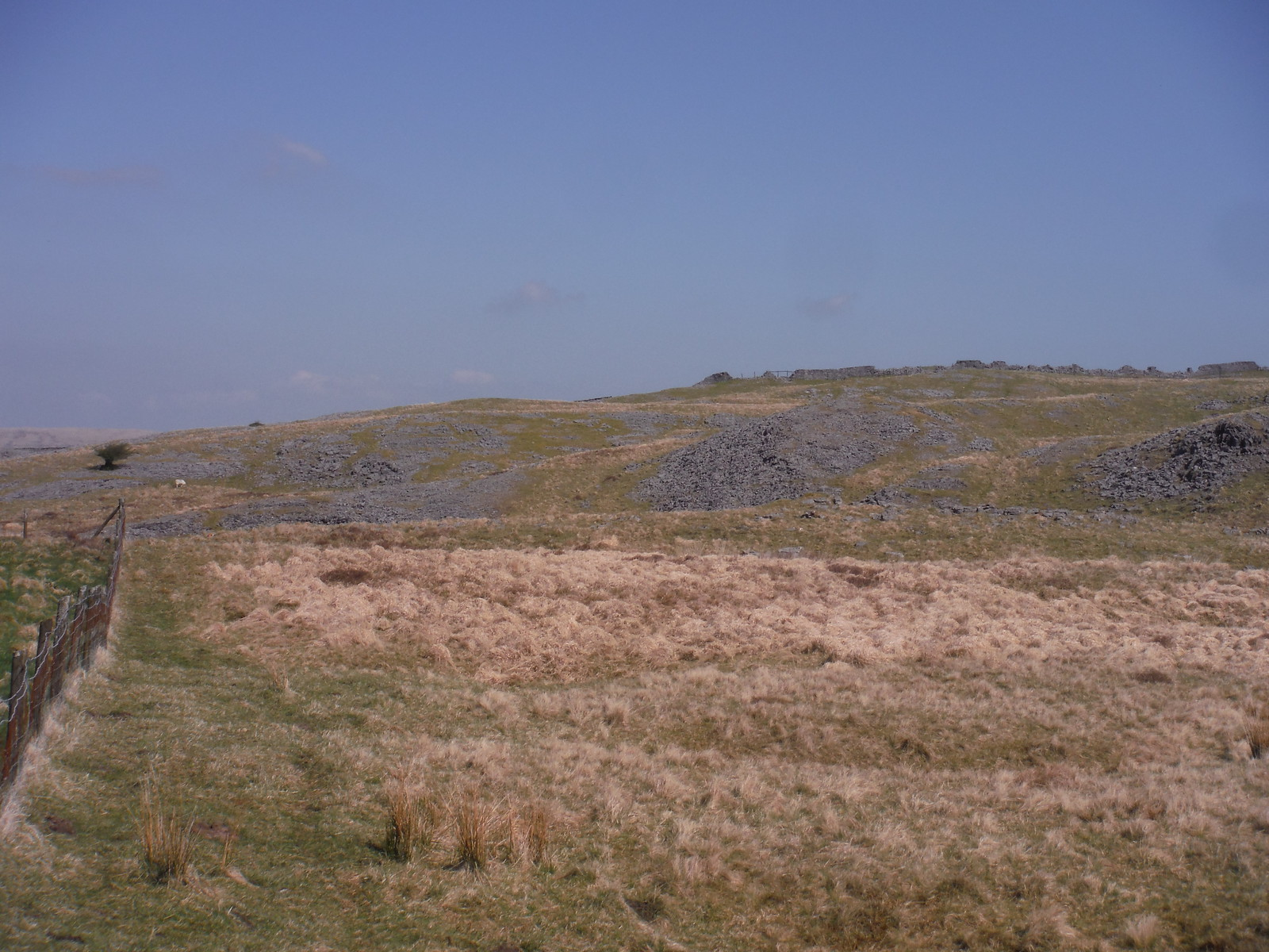 Scattered Limestone Rocks SWC Walk 307 - Fforest Fawr Traverse (Craig y Nos to Llwyn-y-celyn) [Beacons Way Route]