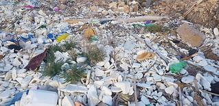 spiaggia con rifiuti (1)