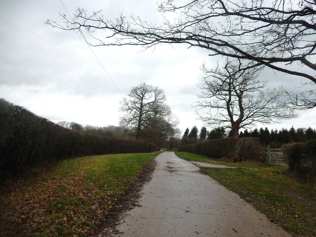 Parkwood Farm Holmwood to Reigate