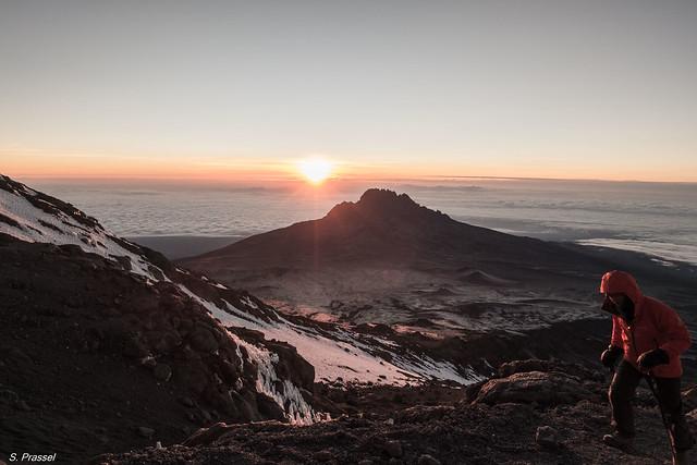 Kilimanjaro  DSC03860