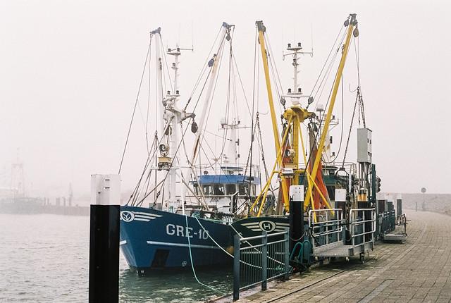 foggy Hooksiel harbour