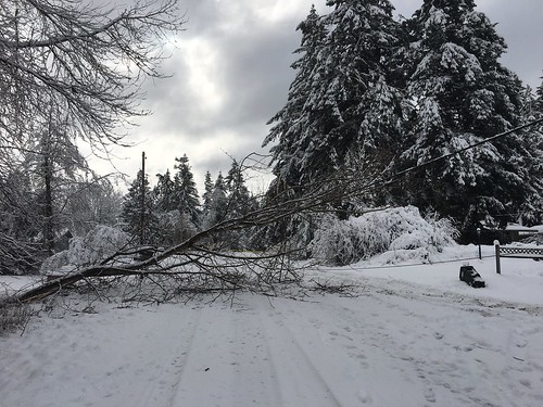 wind snowstorm windstorm snow icy ice outages outage pugetsoundenergy pugetpower pse olympia