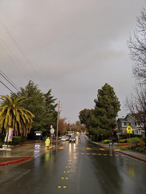 Rainy day in Walnut Creek