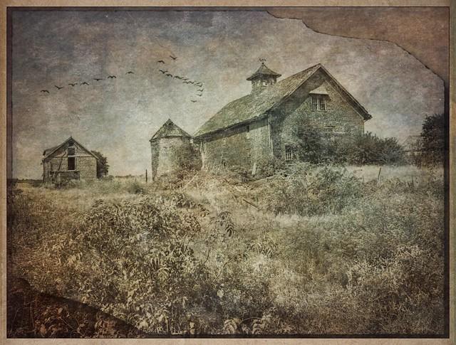 Barn Massachusetts 1980 #photocopier #distressedfxapp #distressedfx #stackablesapp #stackables #rippix #formulas #formulasapp #texture #textures #retro #americana #artistry_flair #theappwhisperer #everything_edited #barn