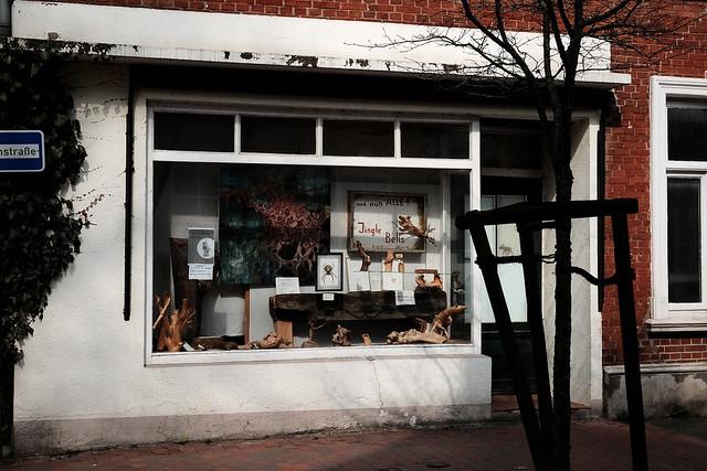 Little Horror shop - I shot film
