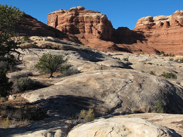 A Wilderness of Rock