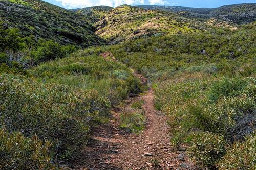 bouquetcanyon sierrapelonamountains path dirt hiking trail green mountain walking bouquetcanyonroad joelach