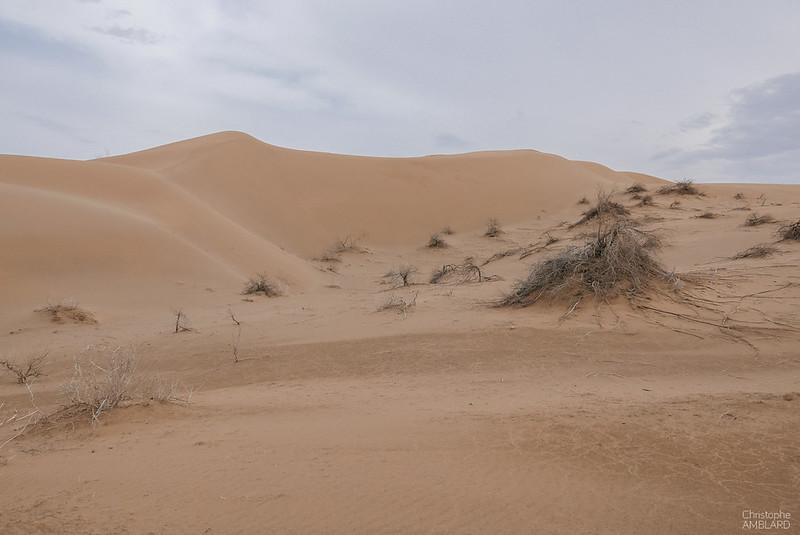Région de Kashan