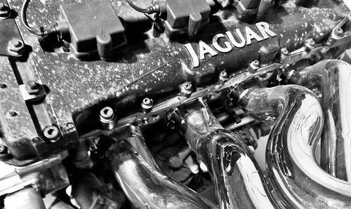 Day 94/100. Jaguars power Is manifold.
