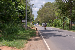 Thanamalvila Road | by seghal1