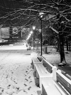 Snowy Night   by Yoan Mitov